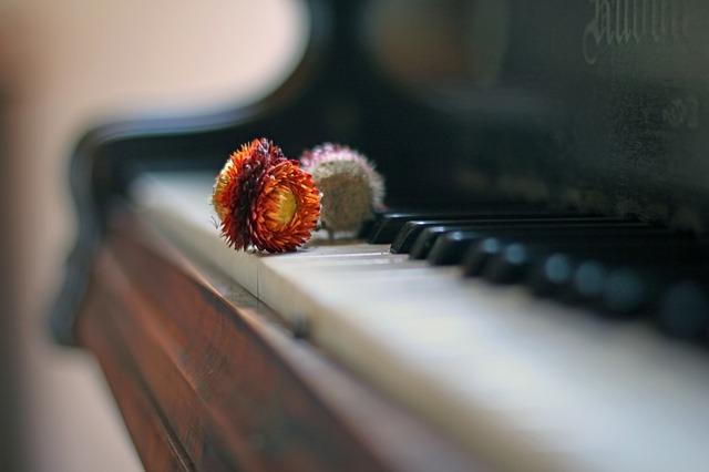 Kinderszenen op. 15 - Ein poetischer Rückblick auf dem Klavier   Robert Schumann